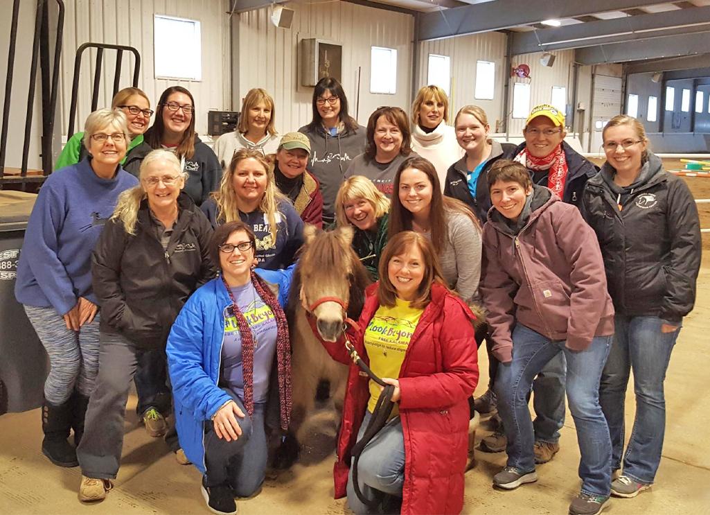 Cheff Center mental health first aid training